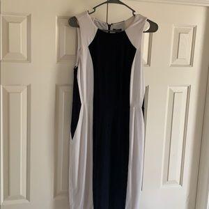 Ann Taylor form fit dress